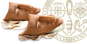Collezione delle Cere Anatomiche di Clemente Susini