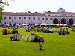 Parco Novi Sad - Parco Piazza D'Armi